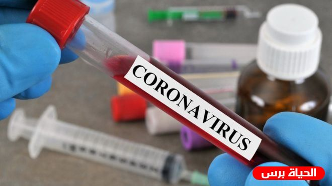 Coronavirus in Palestine claims 14 lives, adds 467 new cases, while 686 have recovered