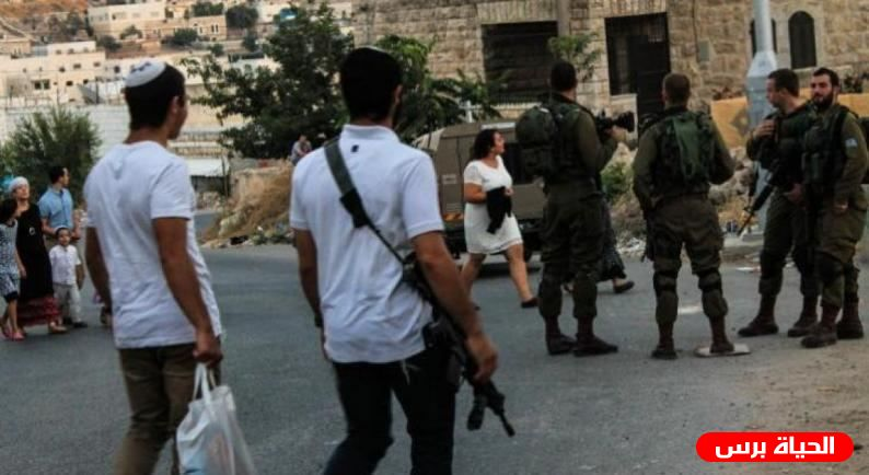 Israeli settlers attack youth in East Jerusalem area, minor injured